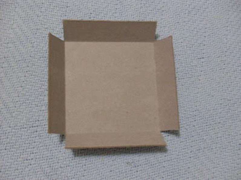 tayra-2011-05-17_085842_thumb